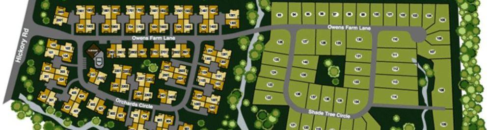 Community Information For Woodstock Properties